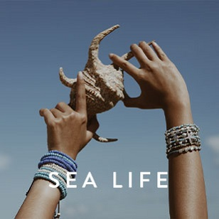Collection-S19-SeaLife